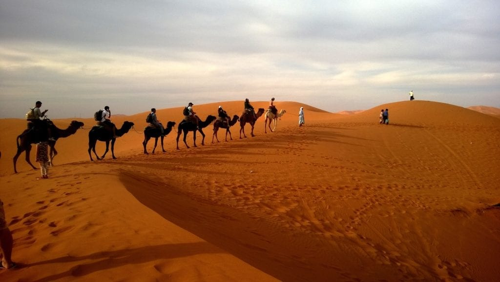 Qatar itinerary - camel ride in the desert outside the capital city of Doha
