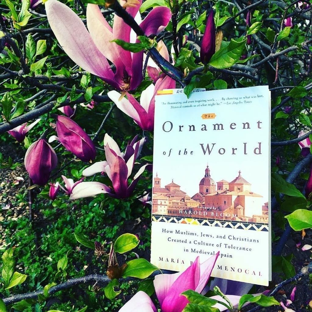 Holiday in Andalusia reading list - Maria Rosa Menocal, Ornament of the World: How Muslims, Jews, and Christians Created a Culture of Tolerance in Medieval Spain