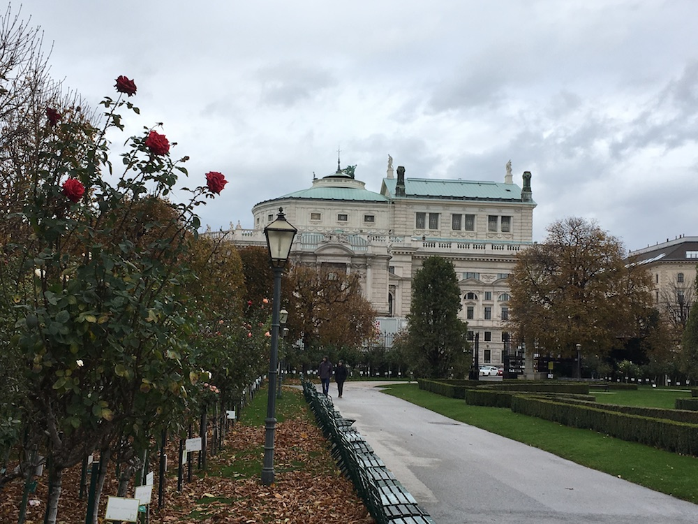 Best time to visit Vienna - autumn in the Volksgarten with Burgtheater and roses