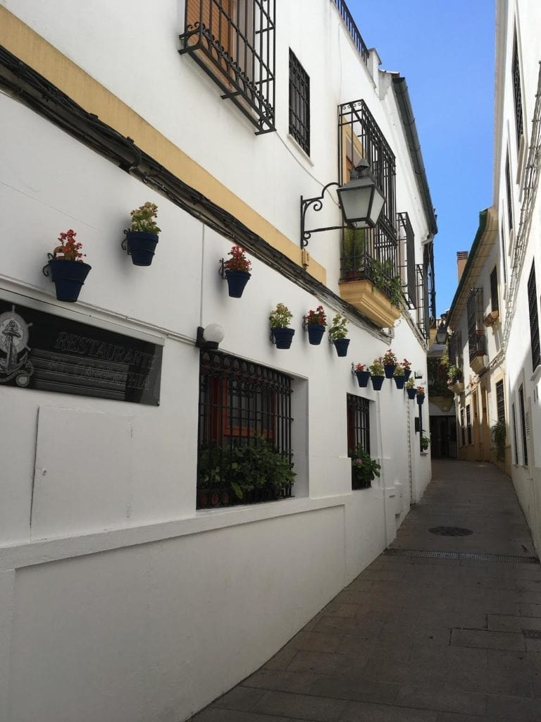 Flower-lined street in Cordoba old town.