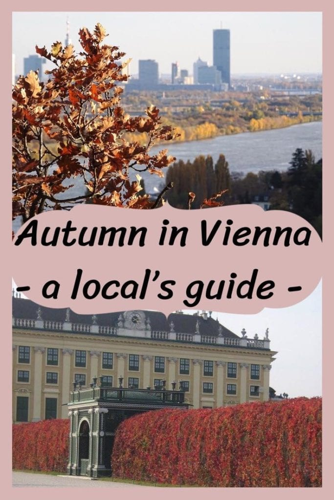 A local's complete guide to autumn in Vienna. Learn everything there is to see, do, and eat in Austria's capital in autumn. Hear it from locals about off the beaten path attractions and festivals in the city of music. At Dream, Book, and Travel we are cultural family bloggers at home in Vienna! Let us plan your stay in the city! You only have to do the dreaming! #autumn #vienna #austria #europe #culture #sightseeing #gourmet