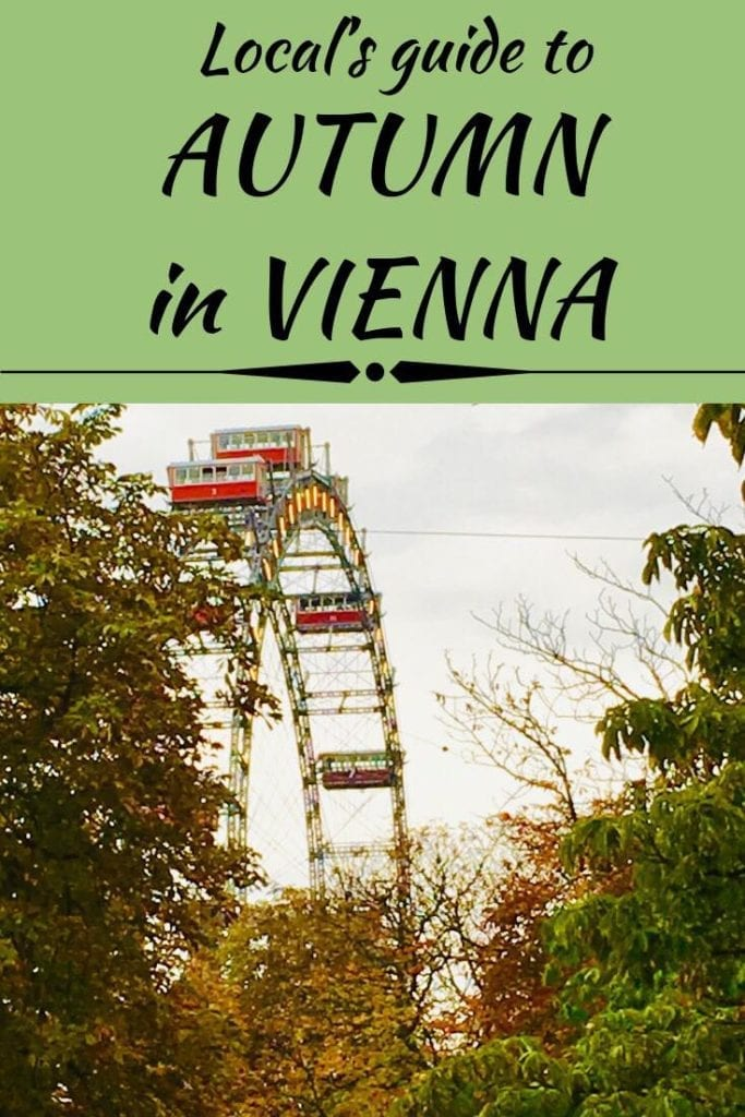 The ultimate guide to autumn in Vienna. Learn everything there is to see, do, and eat in Austria's capital in autumn. Hear it from locals about off the beaten path attractions and festivals in the city of music. At Dream, Book, and Travel we are cultural family bloggers at home in Vienna! Let us plan your stay in the city! You only have to do the dreaming! #autumn #vienna #austria #europe #culture #sightseeing #gourmet #local #tourism