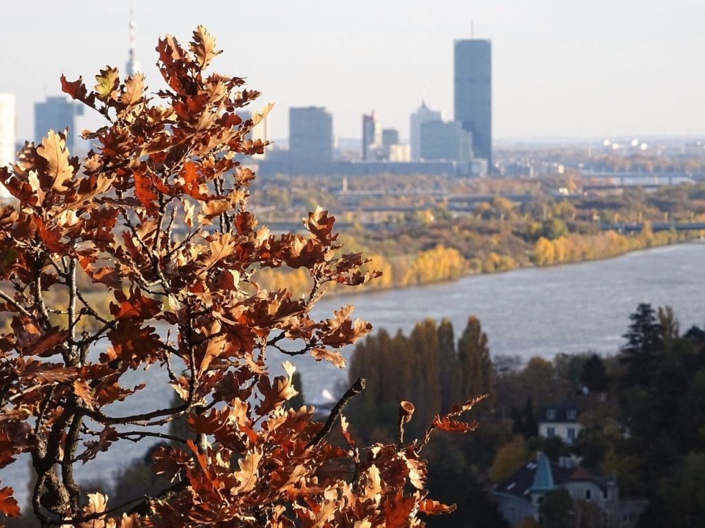 Panoramic view autumn in Vienna from Kahlenberg.