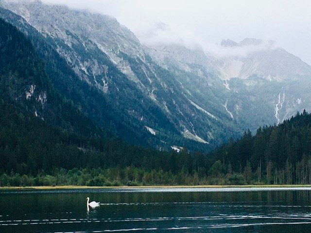 Austria summer holiday - surreal beauty at lake Jägersee