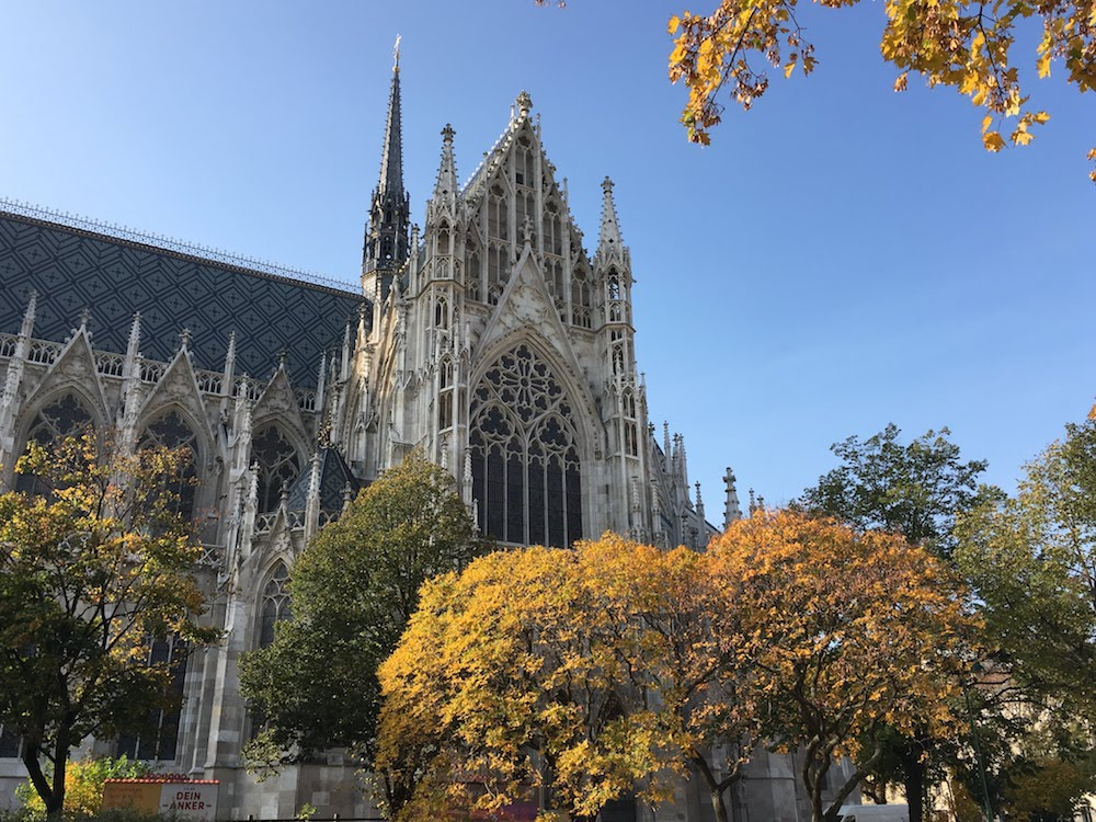 Autumn in Vienna - amazing foliage by the Votiv Kirche