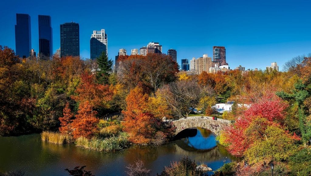 Romantic things to do in NYC - admire autumn foliage in Central Park