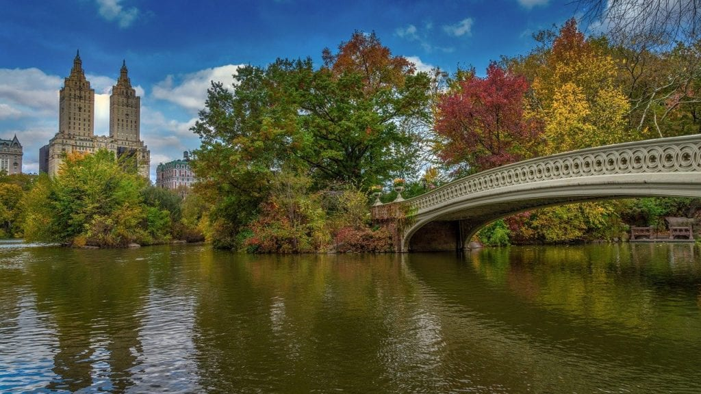 Romantic things to do in NYC -  Central Park